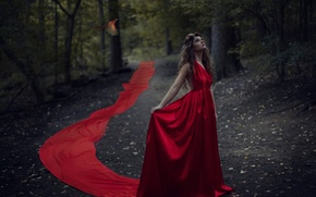 Picture forest, girl, bird, red dress, Jesse Duke, Ailish