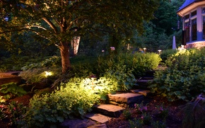 Picture trees, flowers, England, garden, track, steps, lanterns, the bushes, Cleveland Hills