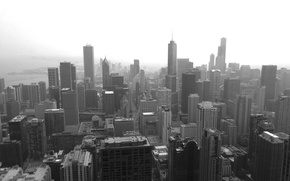 Picture the city, Chicago, Chicago, skyscrapers, megapolis, black and white