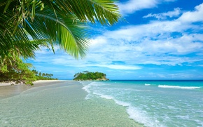 Wallpaper sand, sea, beach, summer, palm trees, summer, beach, sea, sand, paradise, vacation, palms, tropical