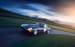 Picture car, Jaguar, sportcar, road, race, classic, E-type