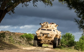Picture armor, vehicle, cannon, U.S. Army, armored vehicle, M1117 Armored Security Vehicle
