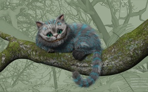 Picture Alice, Cheshire cat, in Wonderland