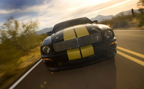 Picture Mustang, Shelby, GT500