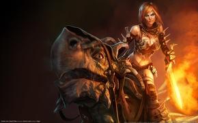Picture girl, dragon, sword, fantasy