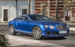 Picture blue, palm trees, background, street, coupe, Bentley, Continental, Bentley, Speed, the front, continental