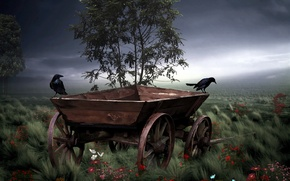 Picture style, crows, cart
