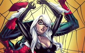 Picture girl, fiction, hero, costume, marvel, Spider-Man, black cat, Felicia Hardy, thief