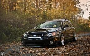 Picture autumn, trees, foliage, Subaru, black, Subaru, stance, Outback