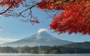Picture autumn, the sky, leaves, trees, lake, Japan, mount Fuji