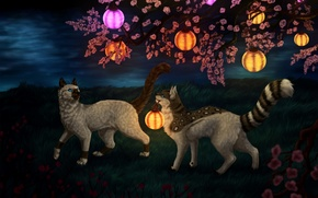 Picture cats, night, nature, fantasy, lanterns, cherry blossoms, by Vialir