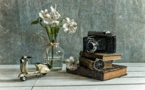 Picture flowers, texture, camera, compass