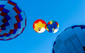 Picture the sky, flight, balloon