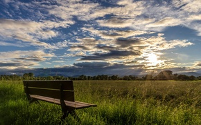 Picture field, summer, morning, bench