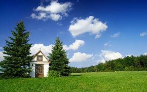 Wallpaper House, Tree, The sky