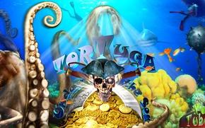 Picture Islands, fish, gold, boat, skull, shark, corals, the diver, tentacles, Pirates, coins, octopus, treasure, saber, …
