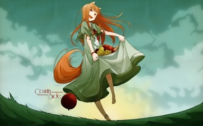 Picture art, spice and wolf, holo