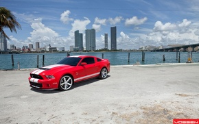 Picture machine, auto, GT500, ford, shelby, Ford, cobra