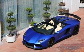 Picture Roadster, Lamborghini, LP700-4, Aventador, matte blue