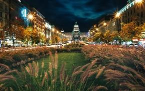 Picture grass, night, Prague, lights, Night, Prague