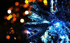 Picture lights, photo, mood, holiday, magic, Wallpaper, new year, tree, garland, picture