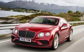 Picture red, Bentley, Continental, Speed, Bentley, continental, 2015