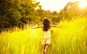 Picture summer, grass, light, heat, mood, child, girl, runs