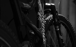 Picture Bike, Tribal, Black and white