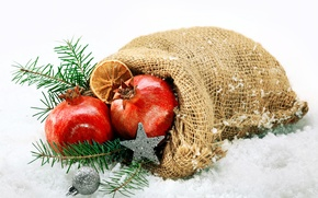 Picture snow, holiday, New Year, Christmas