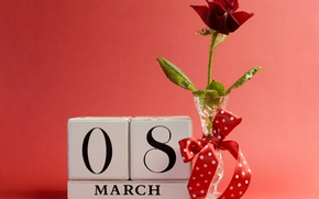 Picture background, rose, vase, red, bow, March 8, ribbon