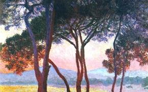 Wallpaper trees, landscape, mountains, picture, Claude Monet, Juan-Les-Pins
