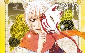 Picture look, pattern, mask, ears, the demon-Fox, red scarf, tomoe, kamisaa the hajimemashita, very nice God