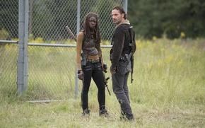 Picture The Walking Dead, Rick Grimes, The walking dead, Andrew Lincoln, Michonne, Danai Gurira