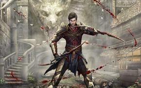 Picture blood, dragon, killer, art, Dragon Age, hawke, fan