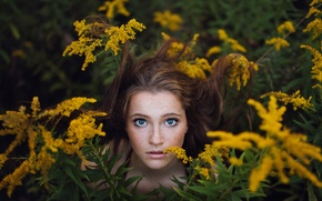 Picture girl, thickets, freckles, hide and seek, bokeh, Mimosa, Jesse Duke, Ailish