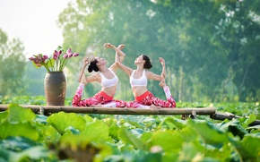 Picture Asian girls, gymnastics, nature, summer, girls, yoga, leaves