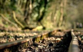 Picture road, rails
