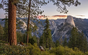 Picture trees, mountains, CA, panorama, Yosemite, California, Yosemite national Park, Yosemite National Park, Sierra Nevada, Glacier …