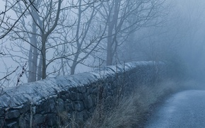Picture road, fog, morning, stone wall