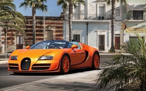 Picture orange, palm trees, Bugatti, Veyron, Bugatti, the front, Veyron, Vitesse, Gierke