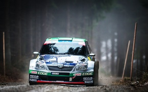 Picture Auto, Forest, Machine, Race, Lights, WRC, Rally, Rally, The front, Skoda, Fabia