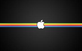 Picture strip, black, apple