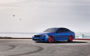 Picture the sky, bmw, BMW, seagulls, front view, blue, f10, monte carlo blue