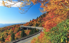 Picture road, autumn, forest, trees, mountains, North Carolina, North Carolina, Blue Ridge Mountains, Linn Cove Viaduct, …