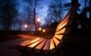 Picture night, Park, bench