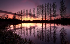 Picture the sky, clouds, trees, sunset, lake, reflection, England, the evening, UK, a number