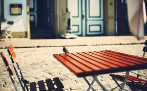 Picture macro, bird, street, Sparrow, table