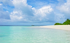 Picture tropics, island, beauty, The Maldives