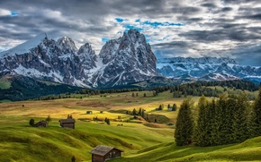 Picture trees, Italy, home, Mountains, Hills