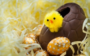 Picture eggs, Easter, chicken, looks, gold, Easter eggs, large, bokeh, chocolate, hatched, around, wallpaper., from the …